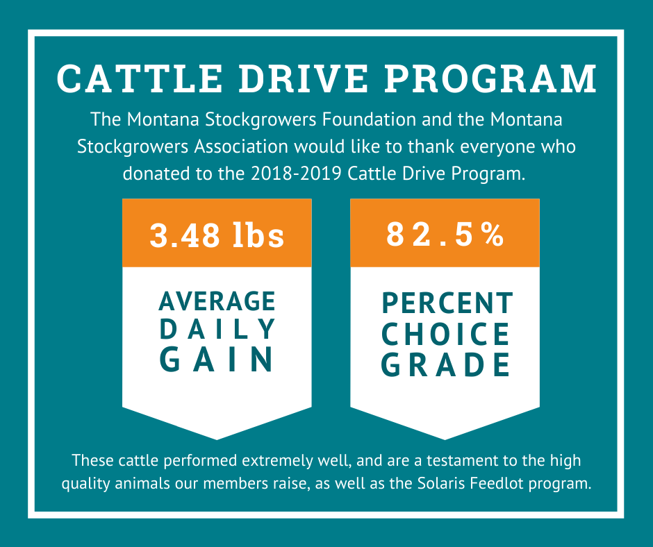 cattle-drive-2019-program-results