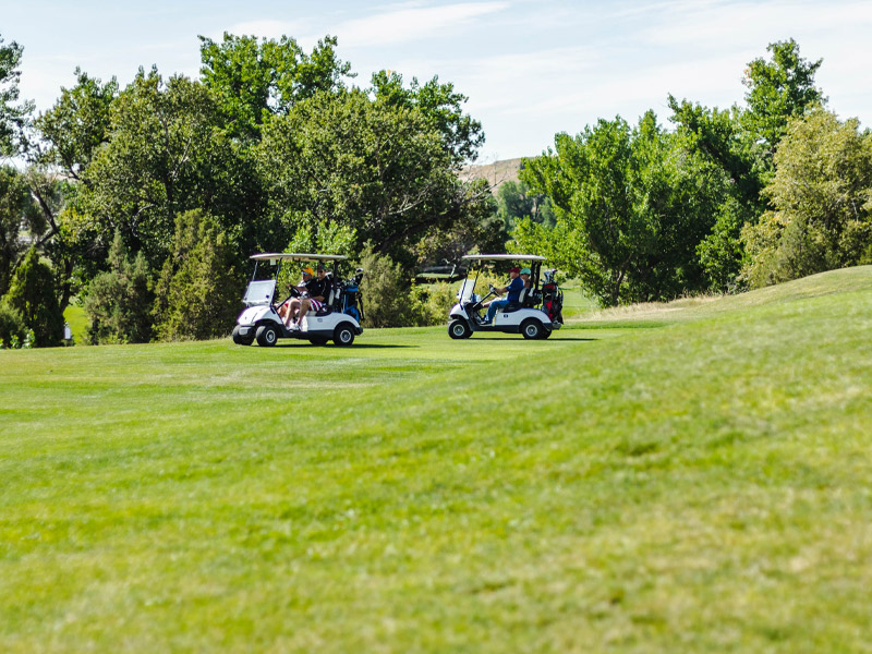 tbone-classic-golf-carts-on-course